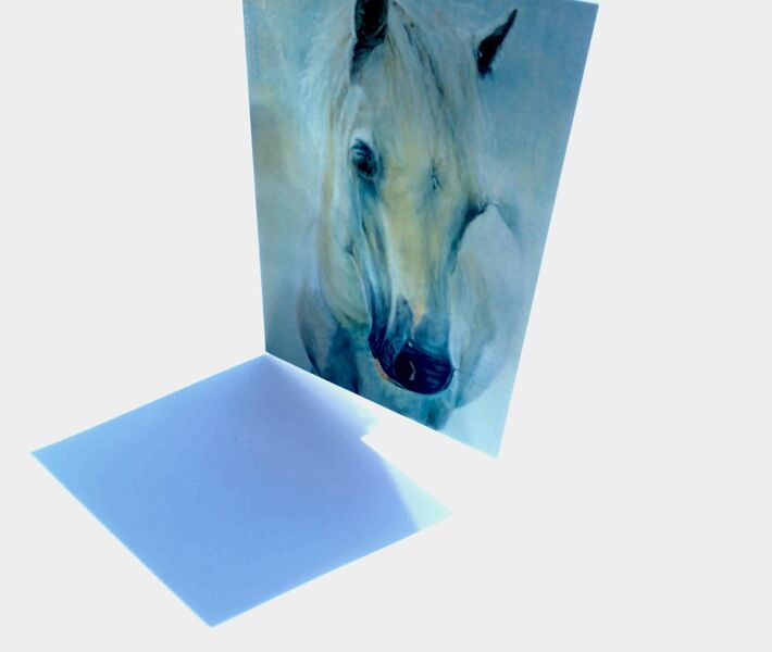 Horse Greeting cards 2