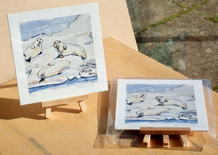 Print of Seals with easel