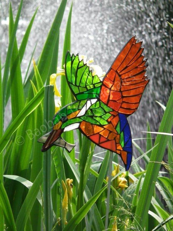 Orange kingfisher