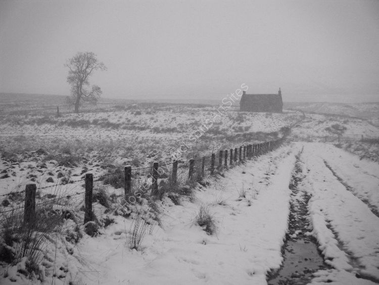 Cottage, Moor of Ardoch.