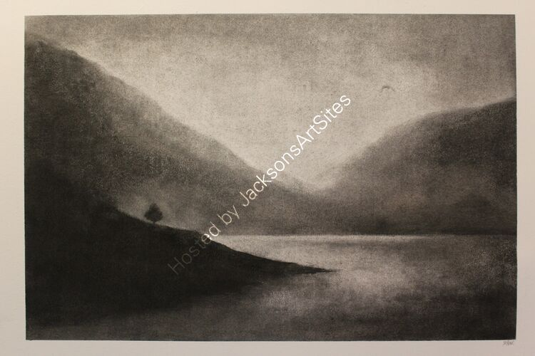 Craobb Caorann, Glen Turret.  Willow charcoal on A2 cartridge paper.  52cm x 35cm.