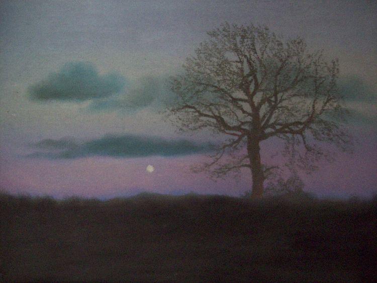 Methven moon.  Pastel.  40cm x 30.5cm.  SOLD.