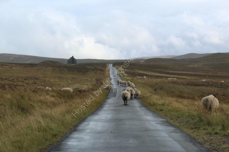 Slow traffic, Glen Quaich.