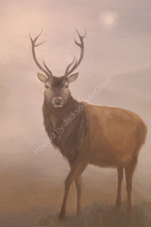 "Stag.  Oil on canvas board.  12"" x 16"""