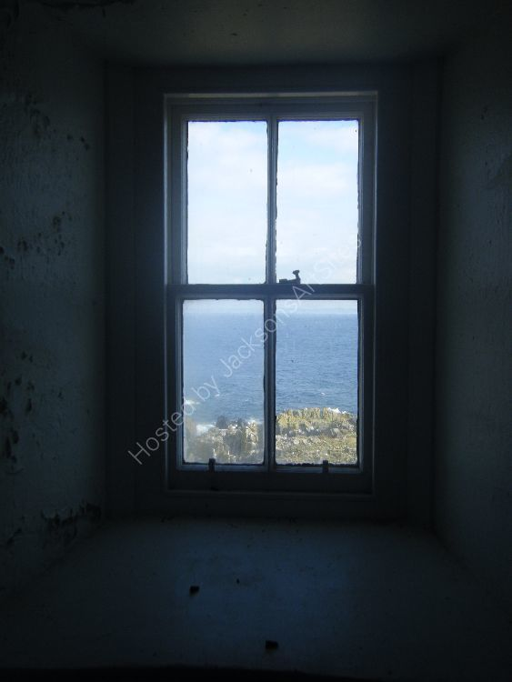 Window, The Isle of May.